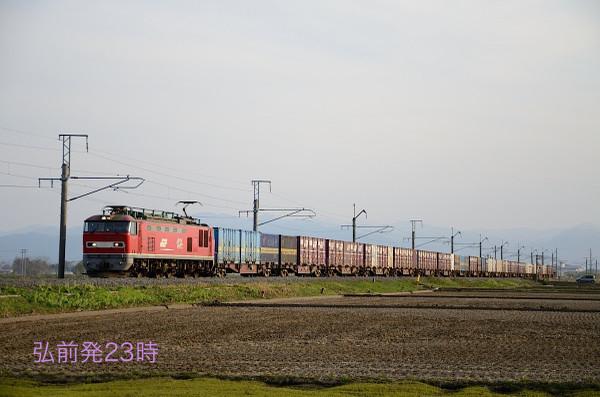 D7l_1108