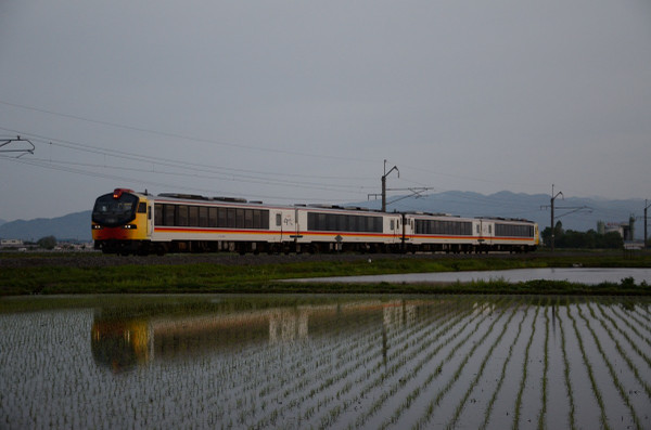 D7l_1317