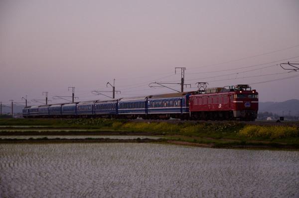 D7l_1355